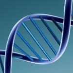 20151120_causes-gènes